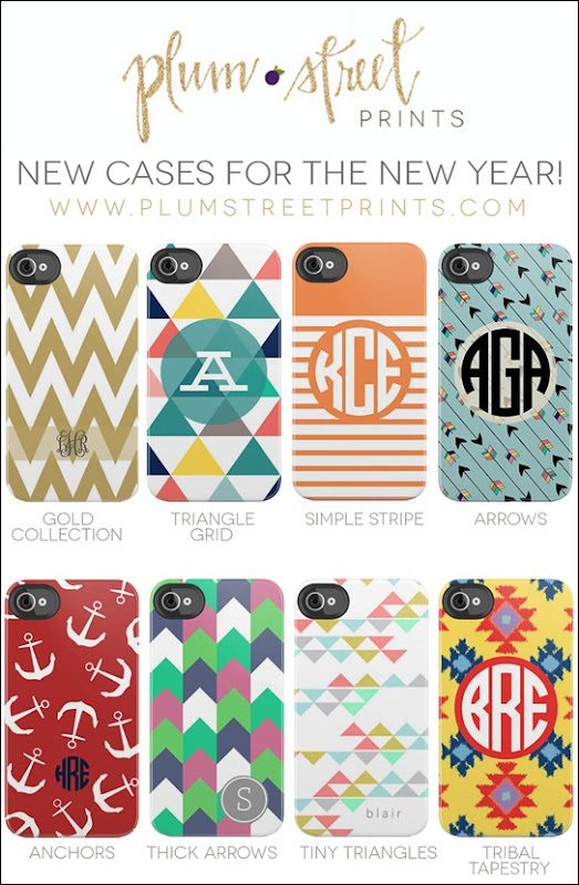 PlumStreetPrints_NewCases_January2013