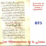 075 - Carpeta de manuscritos sueltos.