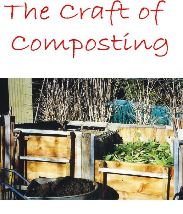 [compost%2520cover%255B5%255D.jpg]