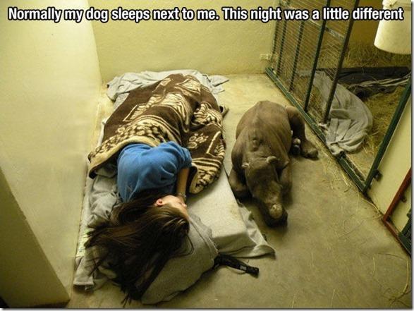 dog-mans-best-friend-32
