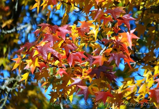 Glória Ishizaka - Outono 2013 - 77