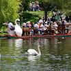 Boston Public Garden swans and swan boat