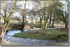 Bradgate Park D800  27-01-2013 14-27-28