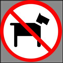 No More Dog Stockings!