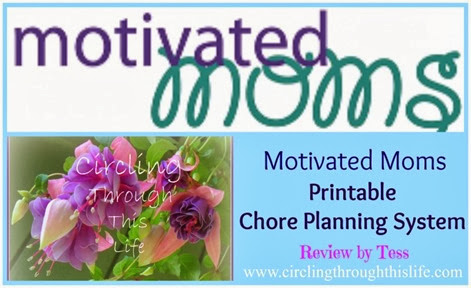 Motivated Moms Chore Planner Review