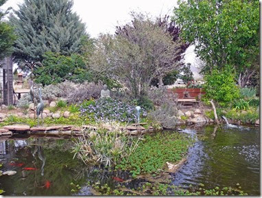 Rusty's Pond and Garden