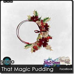 bld_jhc_thatmagicpudding_facebook