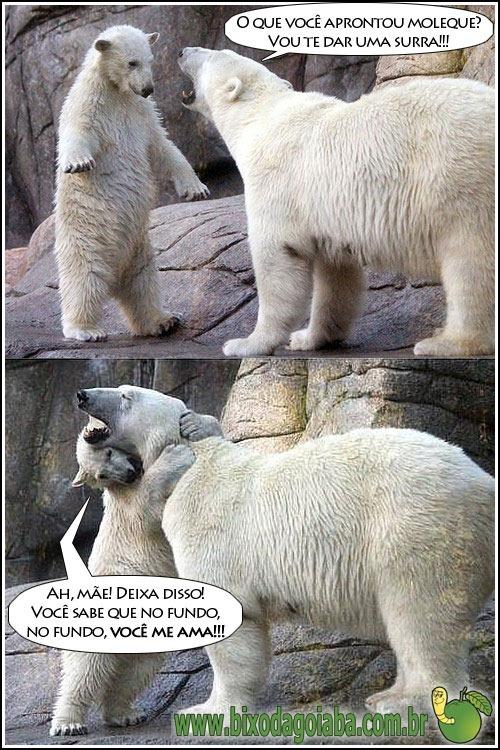mamae-ursa-e-filhote