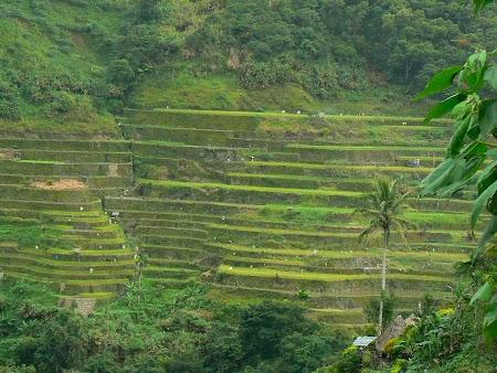 Terase Batad, Filipine