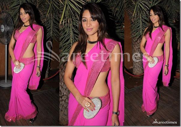 Veena_Malik_Pink_Saree