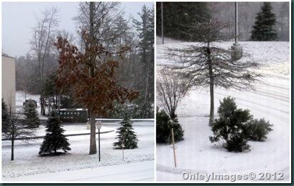 NH snow2