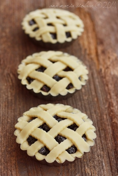 Blueberry tartlets 6 wtr