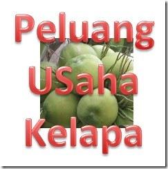 Peluang_usaha_kelapa