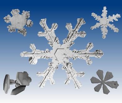 snow_flakes-1226.jpg