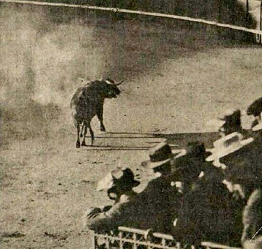 1897-11-09 (p. Pan y Toros) Banderillas de fuego