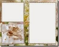 PNG frame (34)