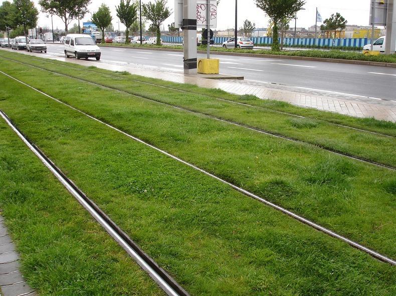 grass-tram-tracks-11