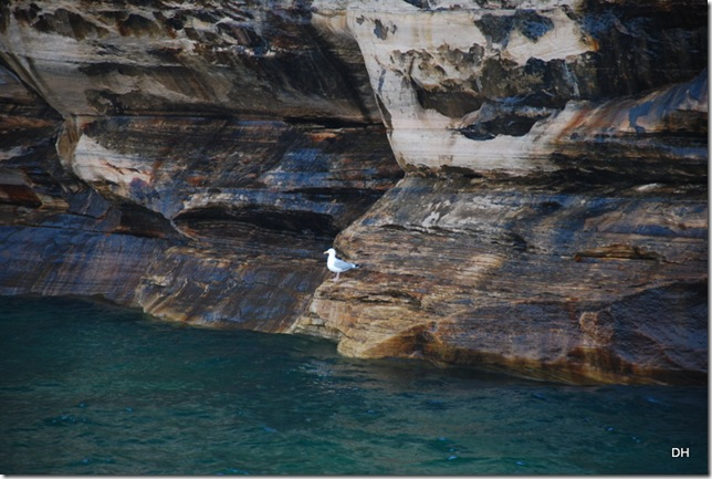 07-12-13 A Pictured Rocks NL Boat Tour (88)