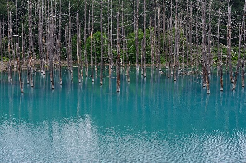 blue-pond-10