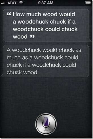 1woodchuck