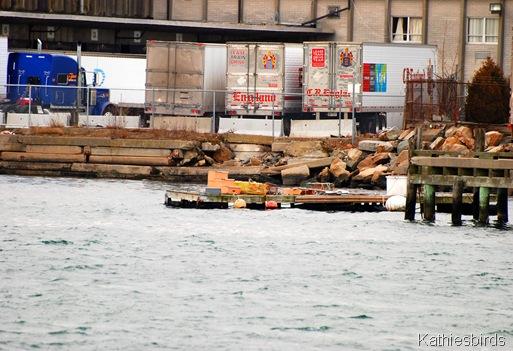 13. docks-kab