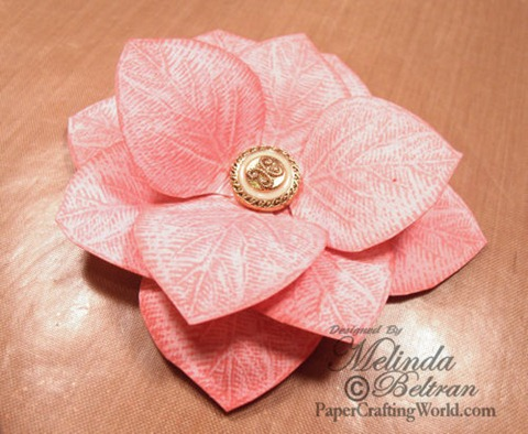 flwoer pink closeup-500