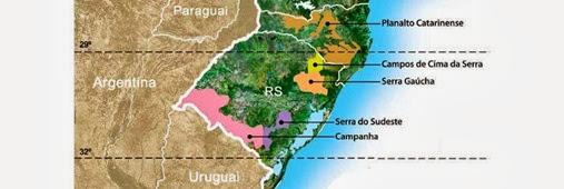 regioes-vinho-sul