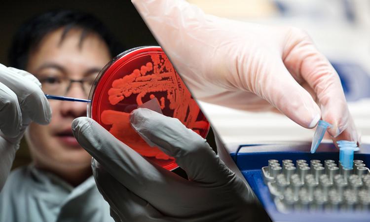 O futuro da Microbiologia Clínica/Biologia Molecular