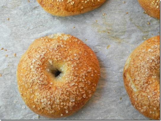 whole-wheat-sea-salt-bagel-3