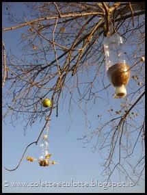 Ghiotte leccornie per gli uccellini dell'OrtoQua (56)_thumb[1]