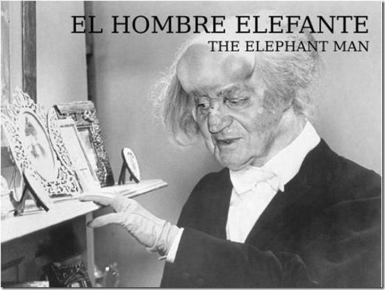 rey elefante3