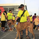 Pet Express Doggie Run 2012 Philippines. Jpg (226).JPG