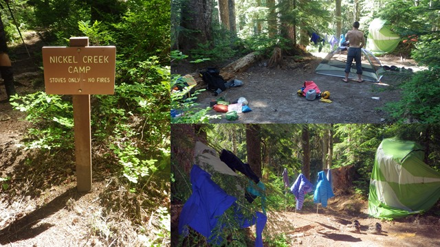 2013 - 07 - 17 - Day 6 - Paradise River to Nickle Creek1