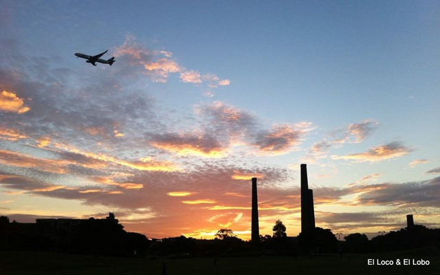 Sydney Park sunset (1)