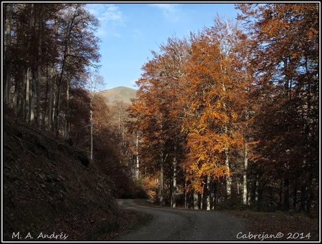 Lantz otoño 078