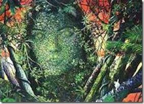 rainha ayahuasca