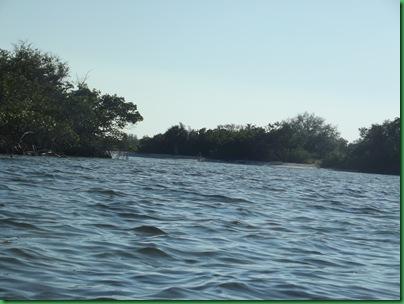 E.G. Simmona Ruskin, FL Site #65 043