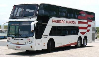 viacao-passaro-marron-passagens-horarios.jpg