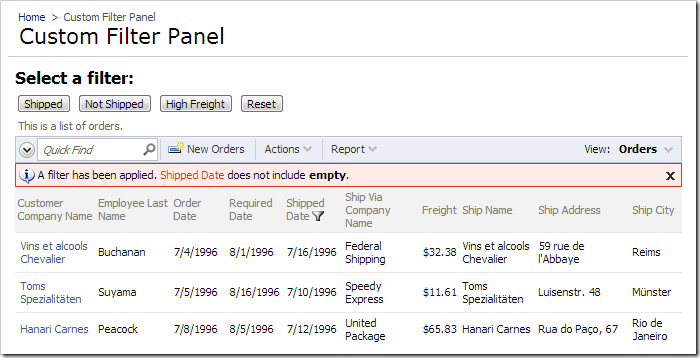 The data view on 'Custom Filter Panel' page will be filtered when the page loads.