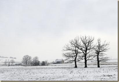 SNOW DAY 2-26-13