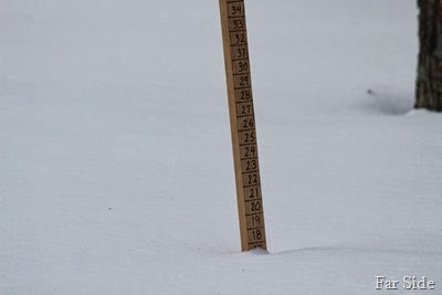 17  1half Inches at the snowstick March 4 2014