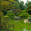 Japanese Hill & Pond Garden at the Brooklyn Botanic Garden