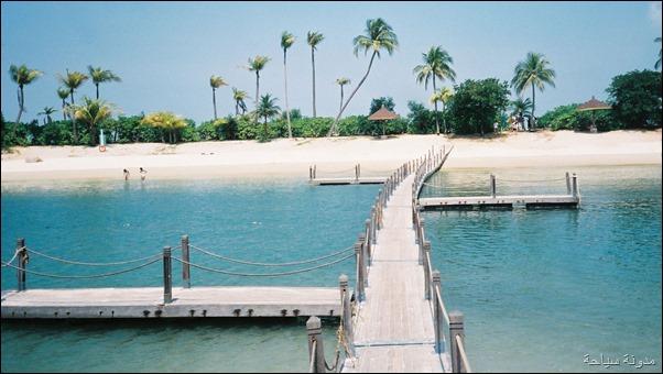 جزيرة سنتونا5