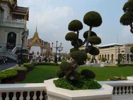 Copacei ornamentali in fata Marelui Palat Bangkok
