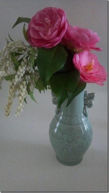 camellia1