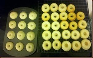 Donut 13
