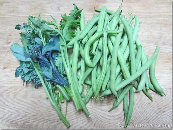 Provider_beans