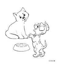 s_dog-and-cat1