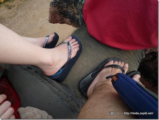 泰國芭達雅-騎大象3