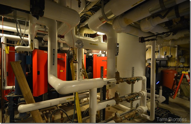 Stowe Boilers Froling TX 150